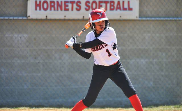Hornets' Softball Wins in Eastern Shore Matchup with Hawks
