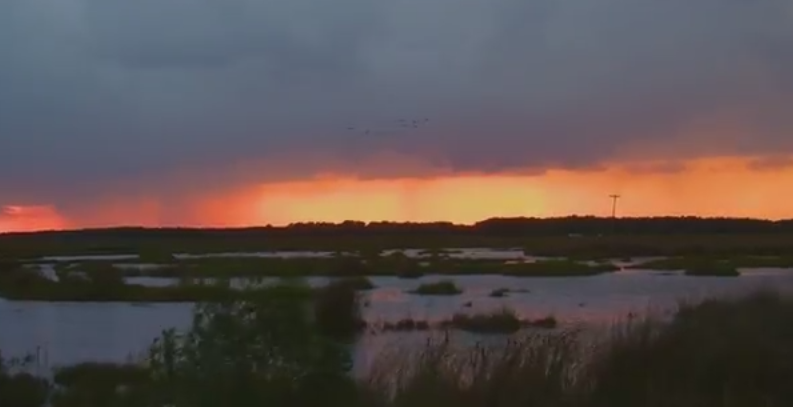 Travels With Charlie: Thunderstorms Across Delmarva