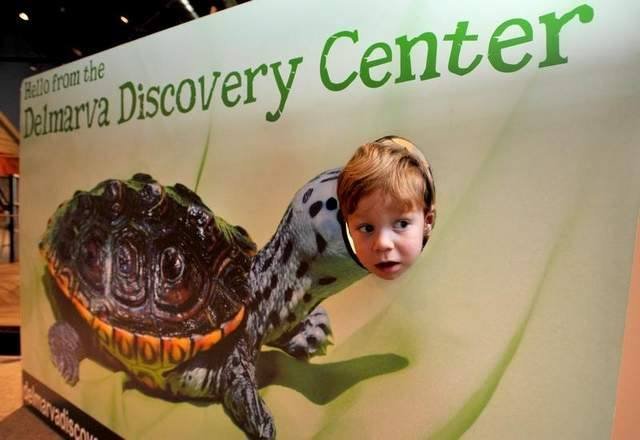 Delmarva Discovery Museum Continues to Educate During Shut Down