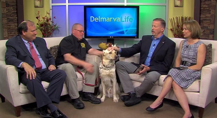 State Farm Hero Dog – Friday, May 1, 2015