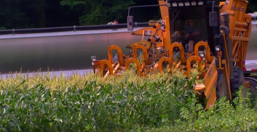 Honoring Delmarva Farmers – Fifer Orchards