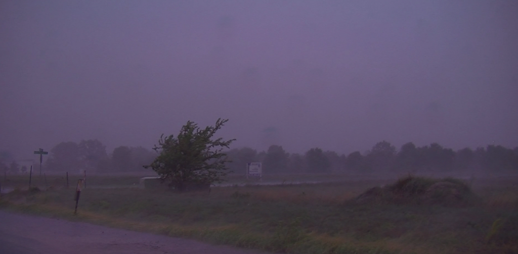 Travels With Charlie: Summer Storms on Delmarva