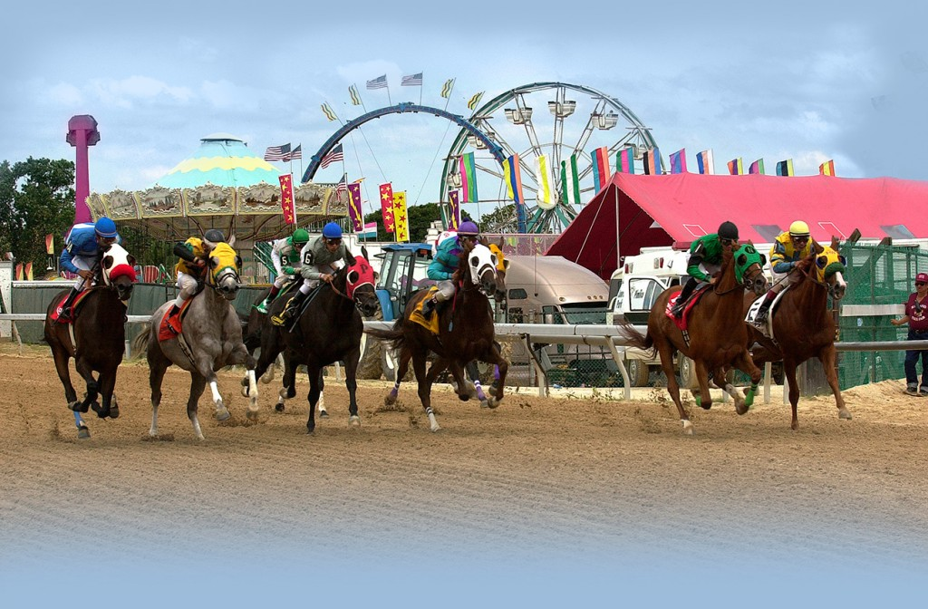 What to Expect at The Maryland State Fair