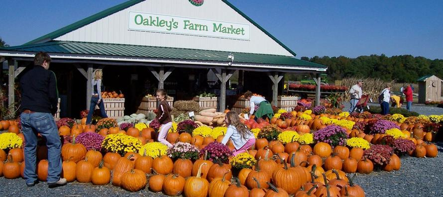 Oakley's Farm Market in Hebron, Md. Offers Fresh Produce for Families