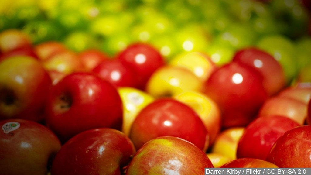 Getting to the Core of the Apple Industry in Delaware