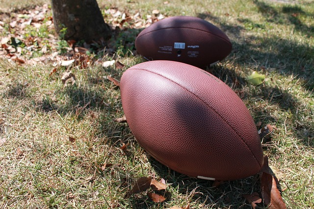 PRMC on Youth Football Guidelines – Wednesday, October 28, 2015