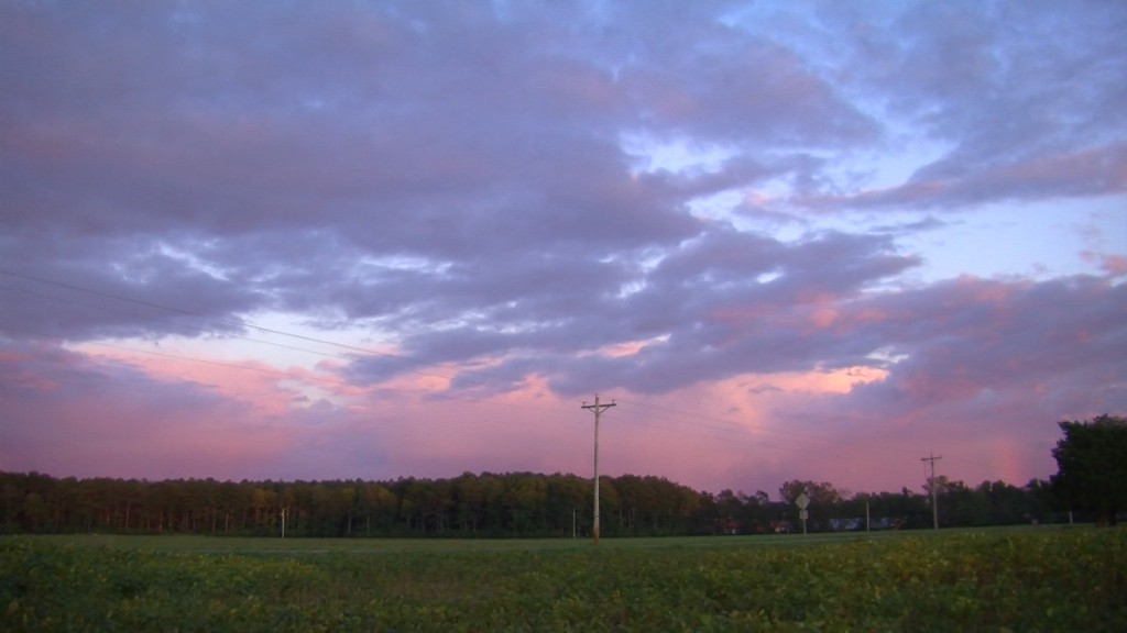 Travels With Charlie: What's and Why's of the Autumn Skies