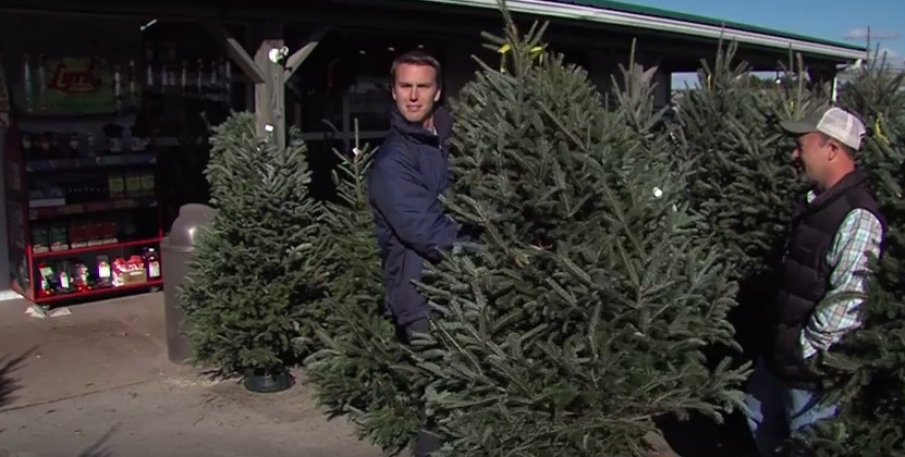 Choosing the Perfect Christmas Tree with How Sweet It Is – Thursday, Dec. 3, 2015
