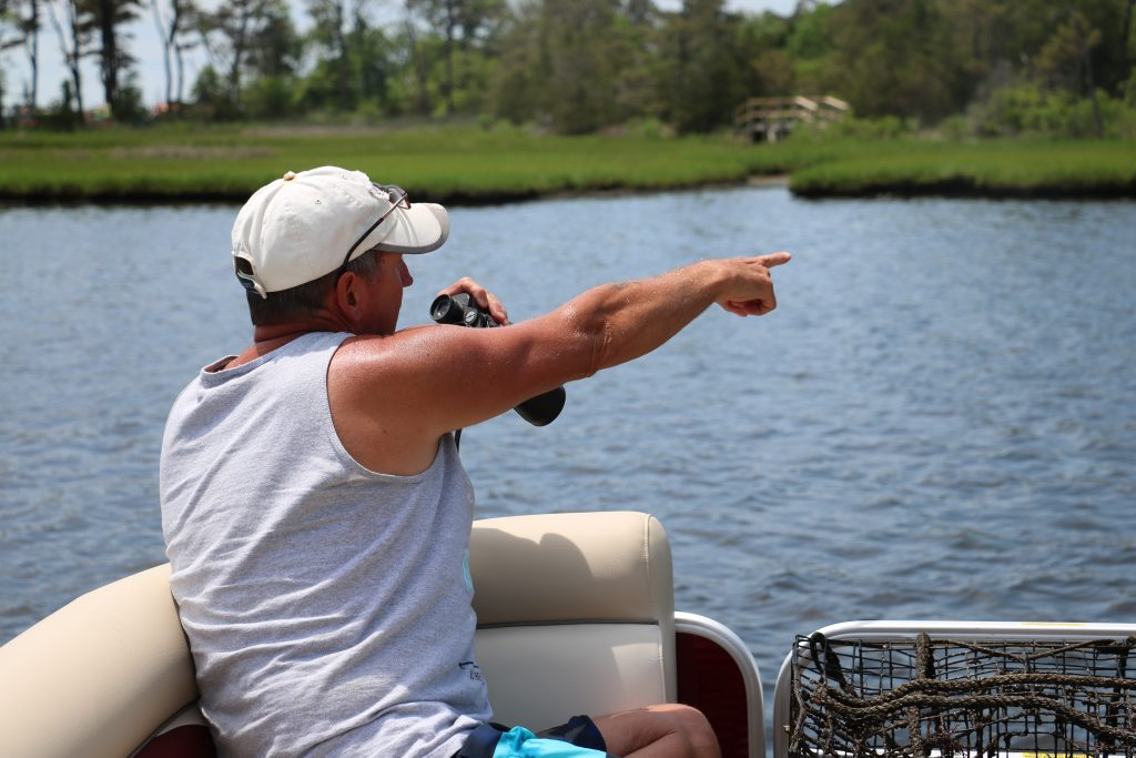 Volunteers Tag Along with Maryland Coastal Bays Program to Count Terrapins