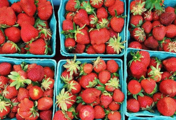 Buy Local, Buy Fresh with Delaware Buy Local Guide