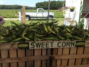 (Photo Credit: Magee Farms)