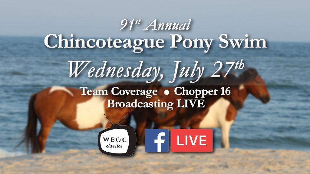 WATCH: 91st Annual Chincoteague Pony Swim (Full Video)