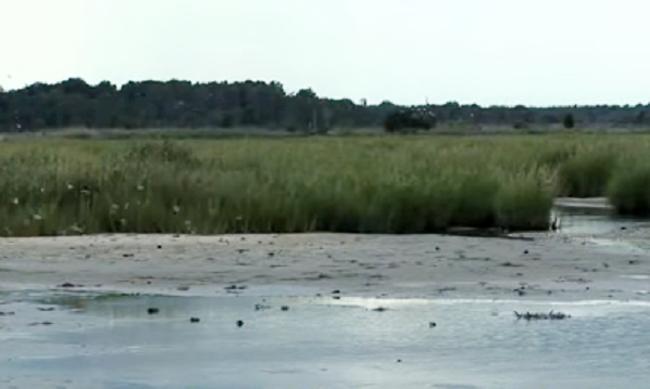 Portions of Prime Hook Creek in Delaware Closed During Waterfowl Hunting Season