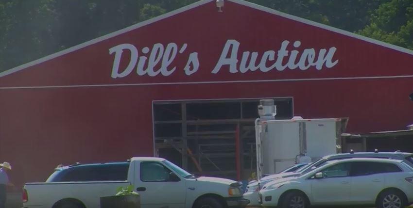 Honoring Delmarva Farmers- Dill's Auction