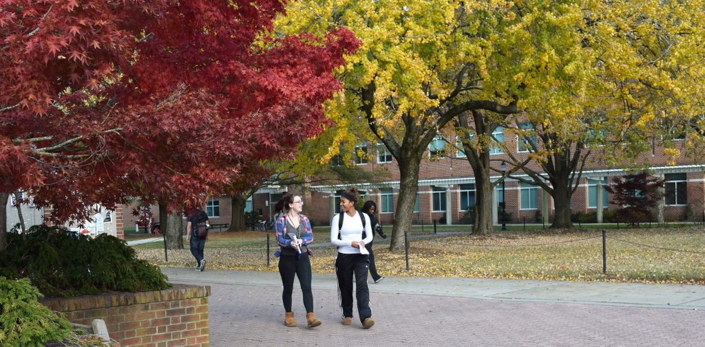 """Salisbury University Named One of the """"50 Most Beautiful Autumn Campuses"""" in the US"""