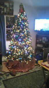 The Beebe family's Christmas tree. Photo by Kirsten Beebe.