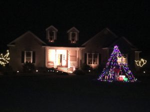 Christmas light tree, by Joan Tyndall of Milton, Delaware.