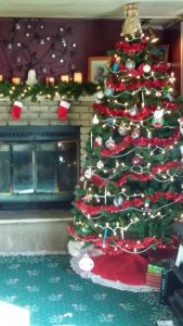 Dover Christmas tree, by Shane of Dover, Delaware