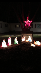 By Steve and Michelle Wheatley of Fruitland, Maryland.