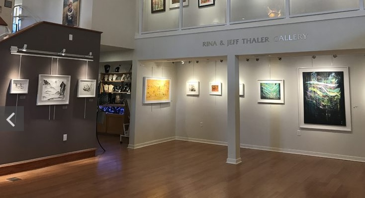 Maryland Gov. Hogan's Wife's Art Featured in New Show in OC