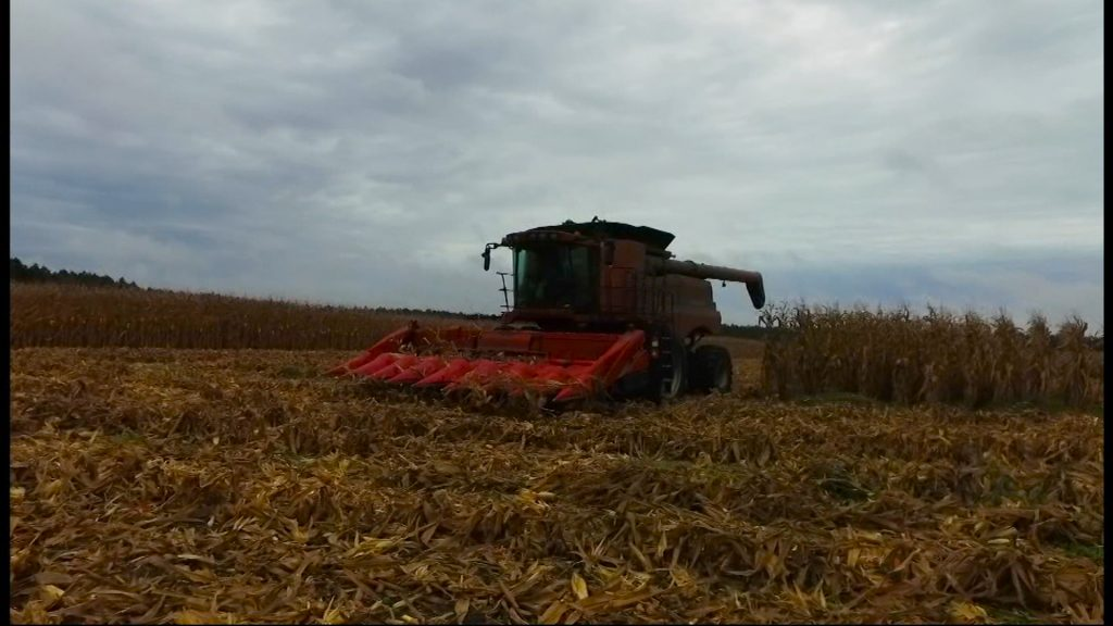Travels With Charlie: Ride-Along in a Combine