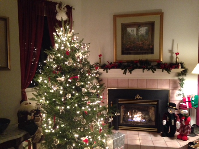 Delmarva's Holiday House 2017- Week of Dec. 17-23