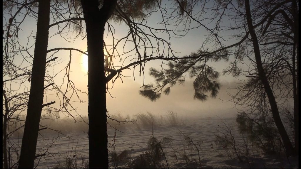 Travels With Charlie: Snow Mist in the Morning