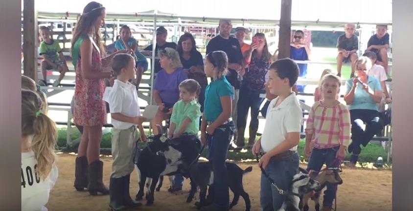 Caroline-Dorchester County Fair, August 1-4