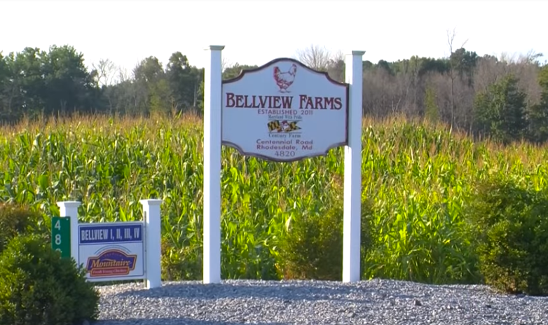 Honoring Delmarva Farmers: Bellview Farms