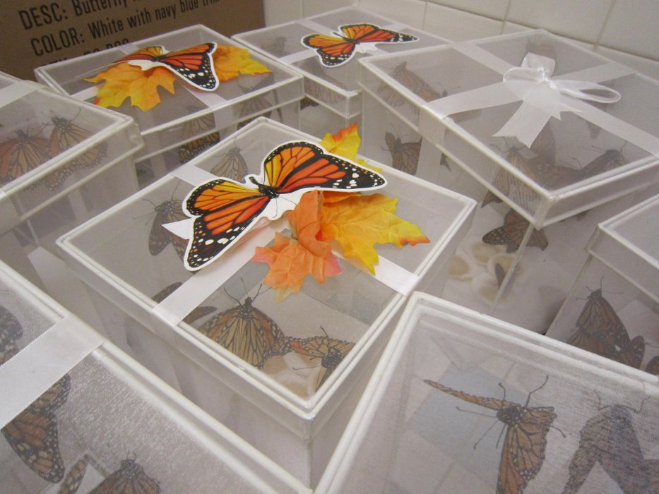 8th Annual Wings of Hope, Butterfly Release Hosted by the Cancer Support Community Delaware