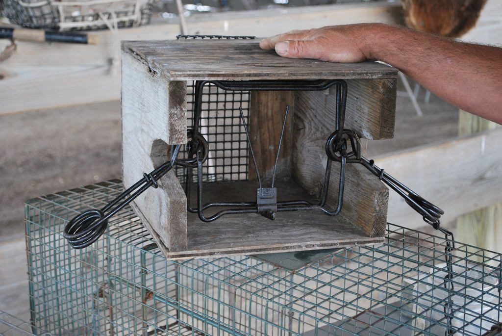 Eastern Shore Trapping Bid Packets Now Available