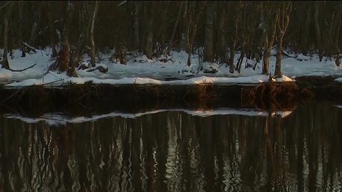 """Travels With Charlie: """"Winter's Stillness Yields to Reflections"""""""