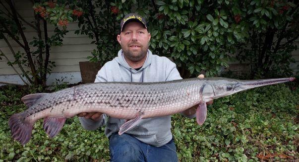 Eastern Shore Angler Catches Record Longnose Gar