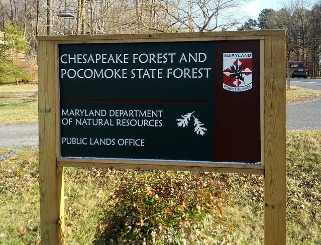 Chesapeake Forest 2019 Hunting Lottery Now Open
