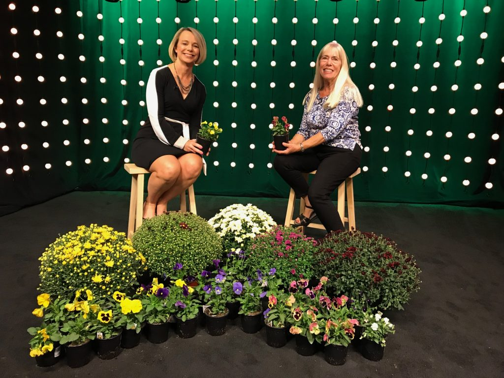 Gardening Expert Ginny Rosenkranz Talks Fall Flowers