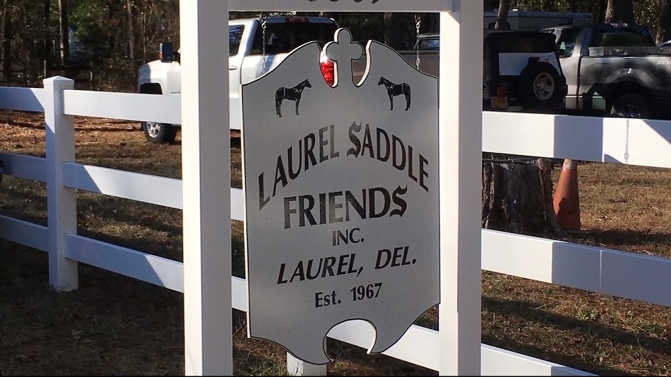 Travels With Charlie: Laurel Saddle Friends Final Horse Show of 2019