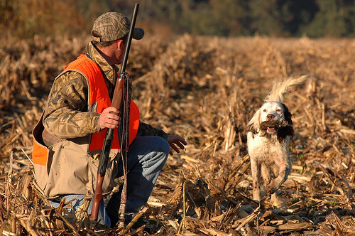 Public Comment Sought for Md. Hunting and Trapping Seasons