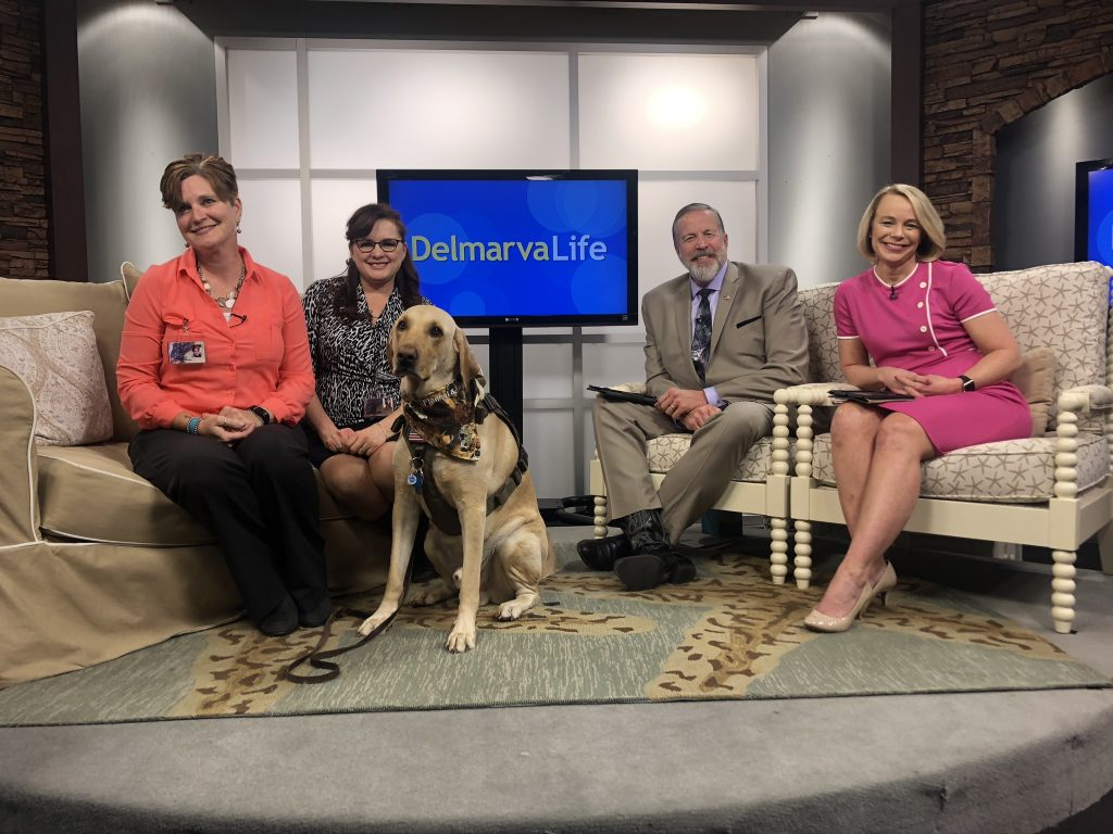 U.S. Kennels, Inc. Provides Service Dogs to Veterans