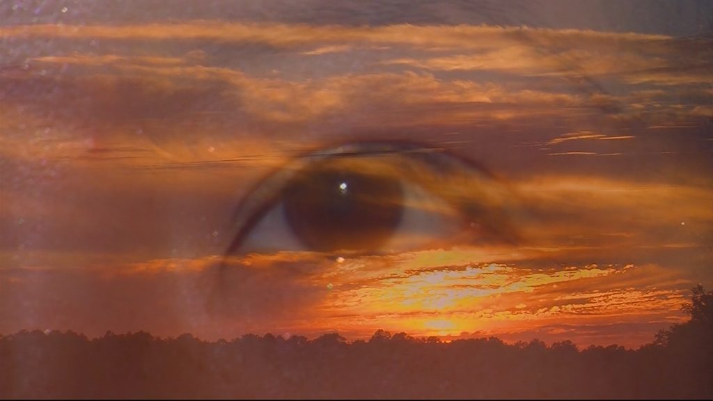 """Travels With Charlie: """"Value of the Human Eye"""""""