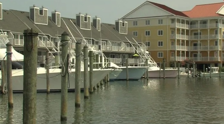 Ocean City White Marlin Tournament to Proceed as Scheduled