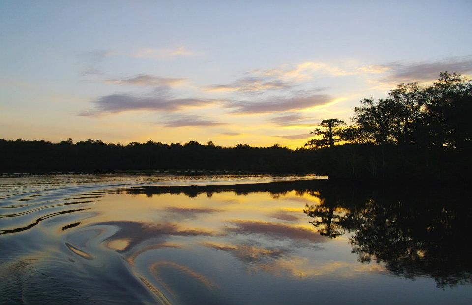 Benefits of Getting Out on The Water with Pocomoke River Cruises