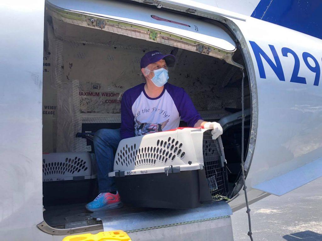 Brandywine Valley SPCA Preparing For Hurricane Season