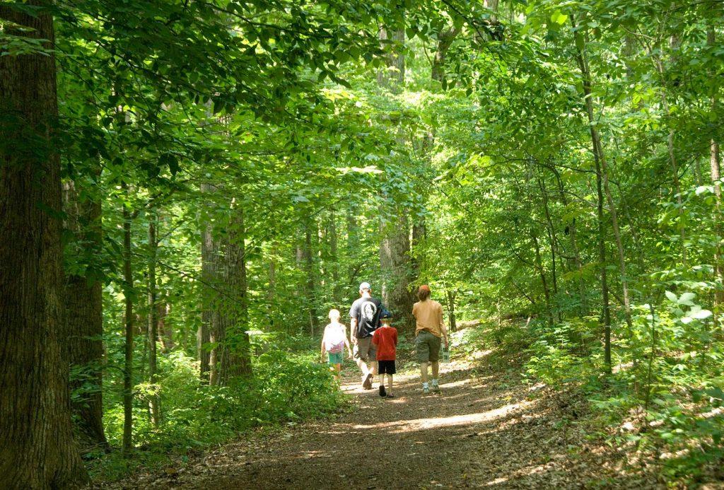 Adkins Arboretum Celebrating 40 Years