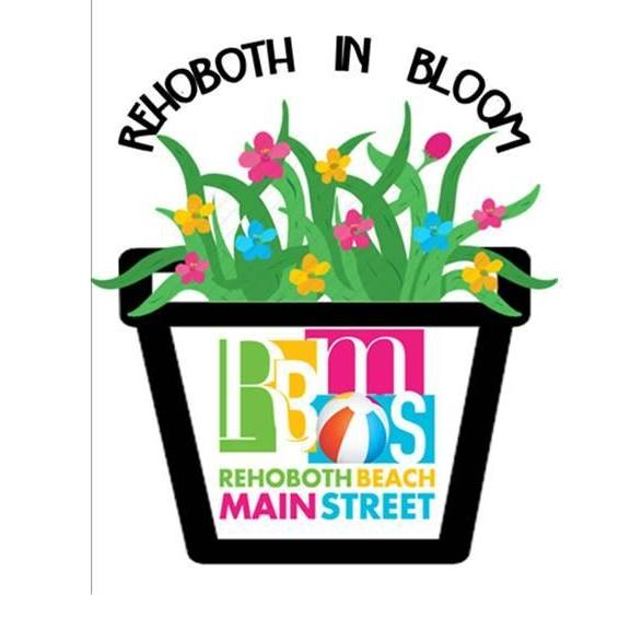 Rehoboth In Bloom Sprucing Up Rehoboth Beach