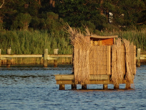 Md. DNR Introduces Online Process for Waterfowl Blind Site Licensing