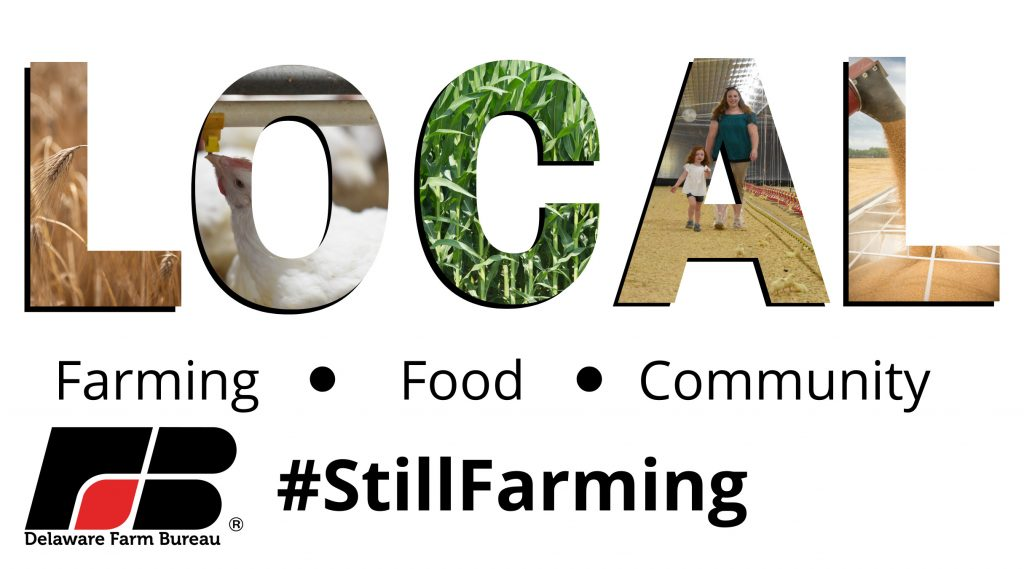 #STILLFARMING: Showing Support For Local Farmers