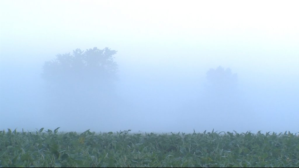 Travels With Charlie: Foggy Morning (Redux)