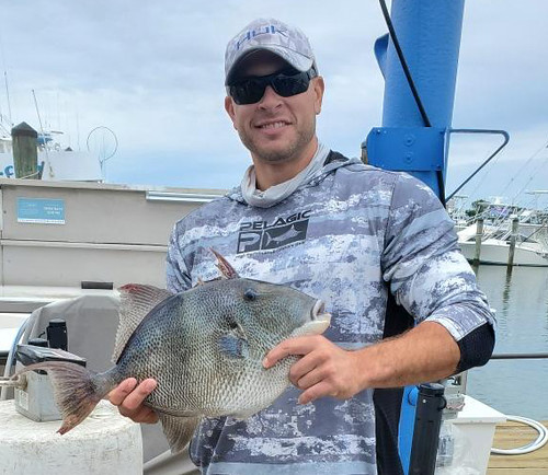 Pa. Angler Catches Maryland Record Gray Triggerfish