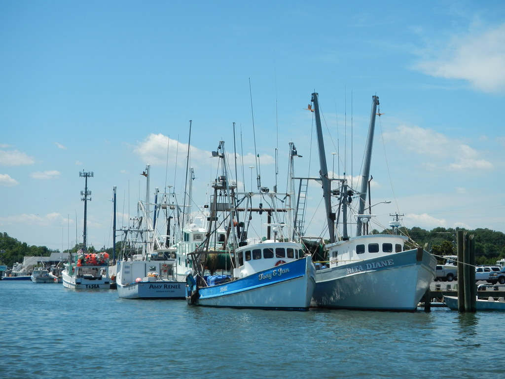 CARES Act Funding Available for Maryland Fishing Industry
