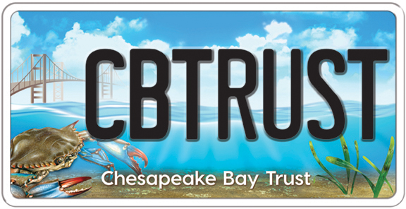Help Protect The Chesapeake Bay When You Do Your Taxes